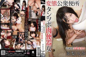 TT-048 Riona Minami Meat Urinal Woman Tantsubo Public Toilet Pervert